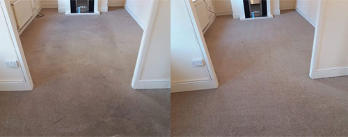 rug cleaning southampton
